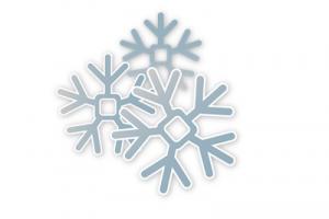 trzy-platki-sniegu-sniezynki-szron